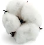 centro-materassi-moglia-topper-cotone